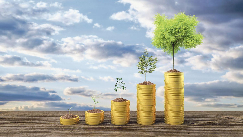 Münzstapel, auf denen eine Pflanze wächst. Je höher der Stapel, desto größer die Pflanze.
