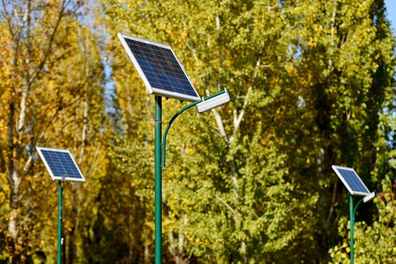 Solarpanel vor Bäumen