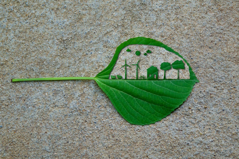 Symbolische Energiedarstellung in einem grünen Blatt