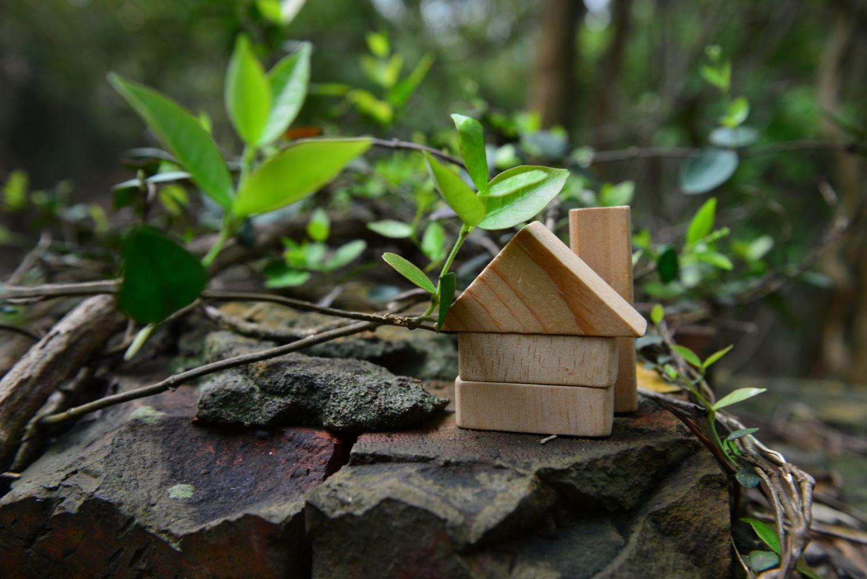 Kleines Holzhaus in der Natur