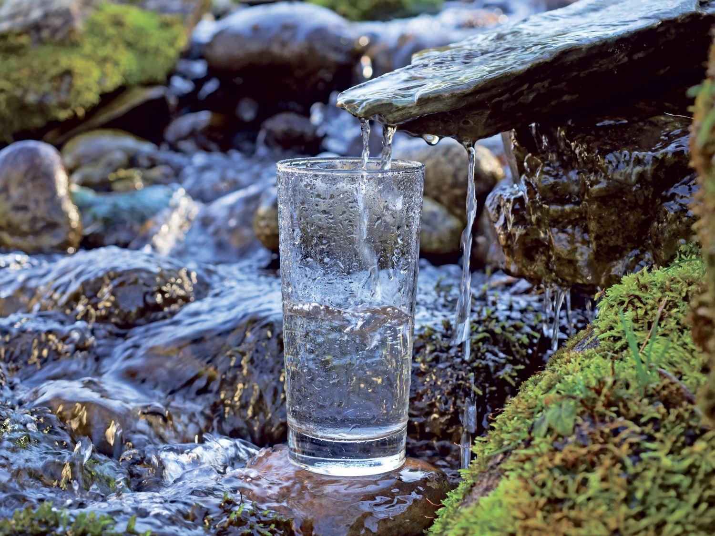 Ein Glas steht an einem Bachlauf und fängt Wasser auf. Thema: Globale Wasserversorgung